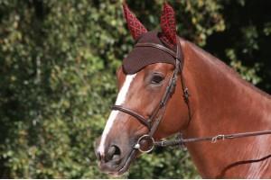 Tacante Bonnet INFI KNIT marron allover rouge porté 2