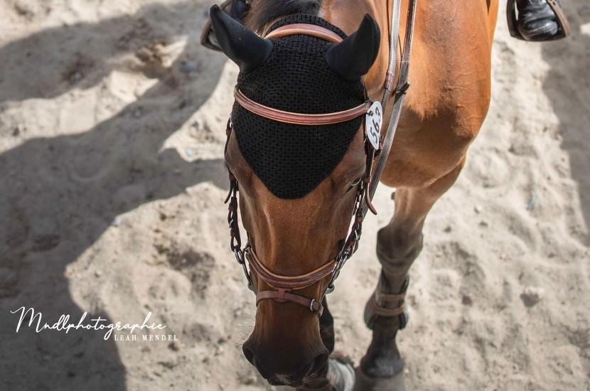 Tacante bonnet INFI-KNIT noir face porté
