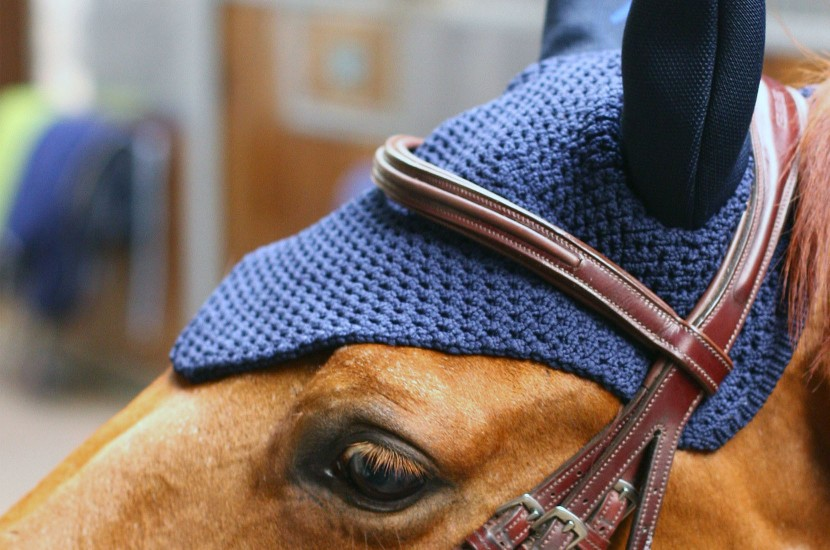 Tacante bonnet INFI-KNIT bleu marine face porté
