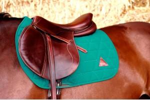 Tacante Tapis de selle vert émeraude sur cheval baie