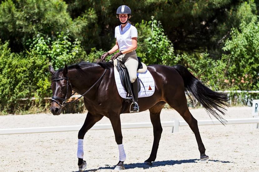 Tacante Tapis de selle EXCEL-ANSE dressage blanc cheval baie