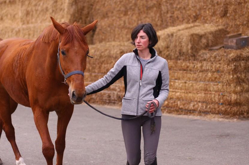 Tacante Veste Hygge femme gris souris portée cheval