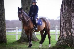 Tacante-Veste-Hygge-femme-bleu marine à cheval