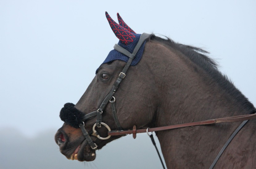Tacante - Bonnet cheval  INFI-KNIT bleu marine all over rouge made in FRANCE