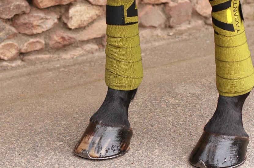 tacante bandes INFI-KNIT noires et jaunes de travail made in France