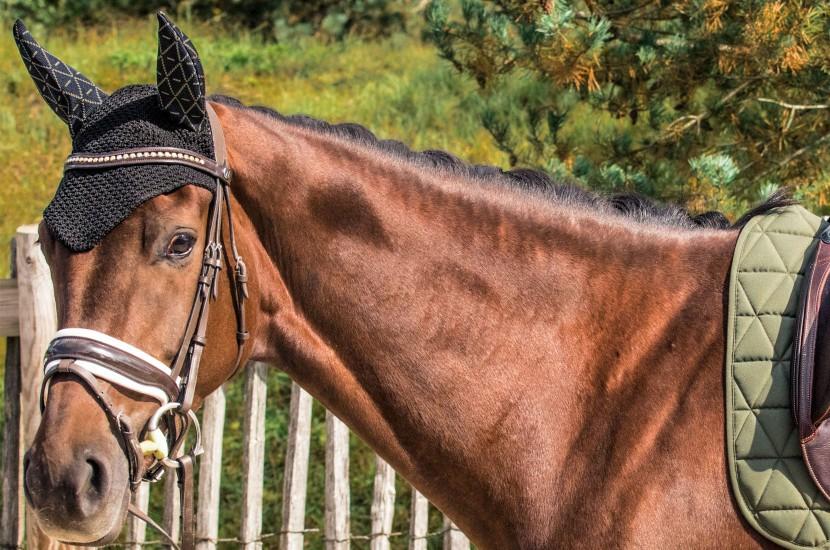 Tacante bonnet INFI-KNIT noir all over kaki porté