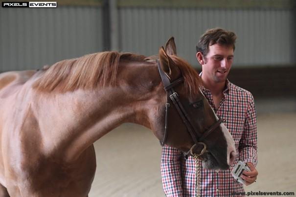 Hocus Pocus de Messitert, rencontre avec un cheval d'exception