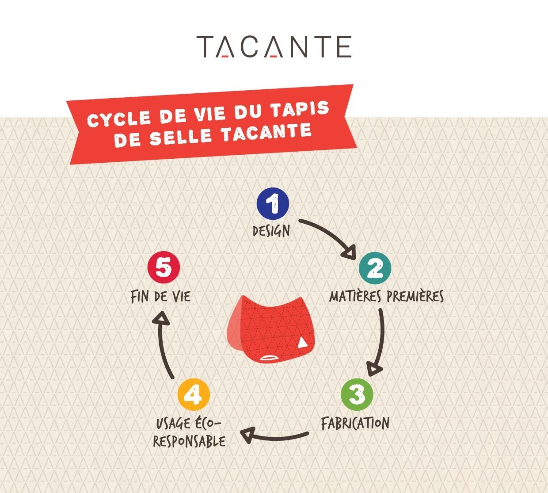 Infographie RSE Tacante