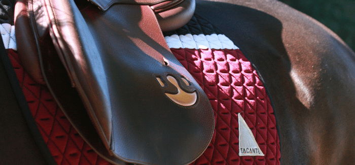 TACANTE technical and environmentally responsible saddle pads