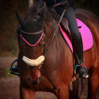 The more we see our pink INFI_KNIT saddle pad, the more we love it 💕.  What about you? Are you pink addict?  Our INFI-KNIT saddle pads are 100% innovative as they are the first ones 100% 3D knitted. You've never experienced such a soft and comfortable numnah. // #tacante #saddlepad #madeinfrance #3dknitting #numnah #pink #equestrianoutfit #outfitoftheday #pinkmood #equestrianstyle @eleonoremusa