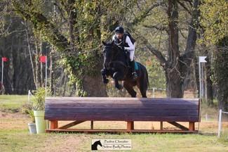 [Tacante Family] Cette semaine les cavaliers de complet nous ont donné rendez-vous au Mans avec  leurs jeunes chevaux 🐎  🚩Dans les Formations 3:  🥇 @raphaelcochet_eventing Féline de l'Ebat remportent l'épreuve avec un dressage en 73% et un double sans faute. 🥈Maxime Livio et Feliz Am'or terminent à la 2nde place. De très bonnes performances également pour les deux autres chevaux de Raphaël Cochet : Francesca du Ter  termine à la 9ème place et Galante de Munia réalise un très bon dressage et un cross parfait .   🚩Dans les Qualif 6 ans: Maxime Livio et Fandgio terminent à la 9ème place.   🚩De très belle performance pour @maxime.livio et Q Fine Art Bois Margot pour la première sortie en complet de la monture: une NEP en plus de 79% et un double sans faute.  🚩 Les deux juments de 4 ans,  d' @alexislemaire_eventing , Hialisca et Hot stuff ont découvert leur futur métier et ont montré de très belles choses!   C'est toujours un plaisir de voir la relève se former.  Prochain RDV des complétistes dans 15 jours pour l'international de Saumur.  📸 @paulinechevalier78 @solene_bailly_photos