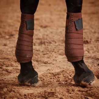 [Tacante Product] Focus sur nos bandes de travail INFI-KNIT noir et marron 👀 ✔️ Avec la partie en polaire toute douce, votre cheval vous remerciera 🥰  ✔️ Avec le tricot hydrophobe, votre machine ne sera plus rempli de sable !  🇫🇷 Tous nos produits sont techniques, écoresponsables et fabriqués en France. 🎁 Livraison gratuite en France.  #tacante #tacantefamily #tacanteoutfit #tacanteproduct #bandesdetravail #bandages #infiknit #knitting #3dknitted #horseriding #equitation #equestrian #equestrianlife #equestrianworld #equestrianoutfit #equestrianstyle #ecoresponsable #sustainable #rse #csr #madeinfrance